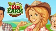 Big Farm – браузерная онлайн-игра, которая является симулятором фермерского хозяйства. Вам предстоит расширять собственную виртуальную ферму, выращивать овощи и фрукты и другие сельскохозяйственные культуры, разводить животных, заниматься строительством необходимых для...